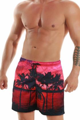 Мужские пляжные шорты с ярким принтом Jolidon B601I RI